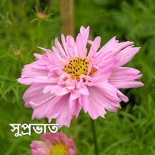 Morning & Night in Bengali - náhled