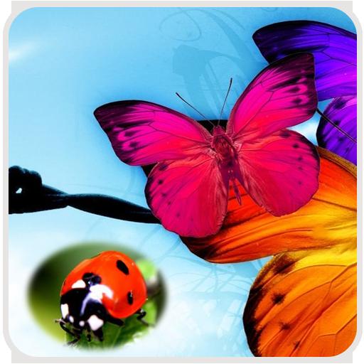 摄影の昆虫の壁紙 LOGO-記事Game