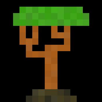sapling_acacia