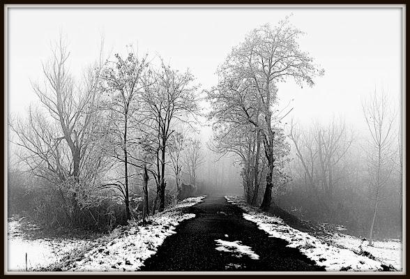 Passaggio nell' inverno di Furlissima