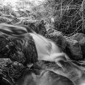 Tavira Heaven by Miguel Pires - Nature Up Close Water ( ta vira water fall heaven )