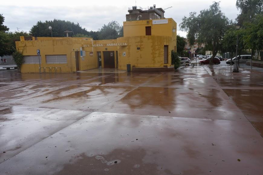 Imagen tomada en Nueva Andalucía.