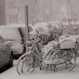 Illustration by J & M - City,  Street & Park  Neighborhoods ( düsseldorf, winter, illustration, image, germany, view )