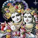 Jaya Janardhana Krishna with Lyrics icon