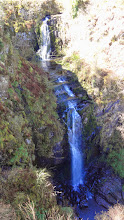 Photo: Glenashdale Waterfall