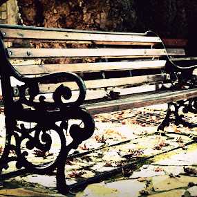 Autumish by Daniela Elena - Buildings & Architecture Other Exteriors ( bench, autumn, leaves )