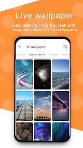 4K Wallpapers – Full HD Wallpapers App Latest Version  Download For Android 2