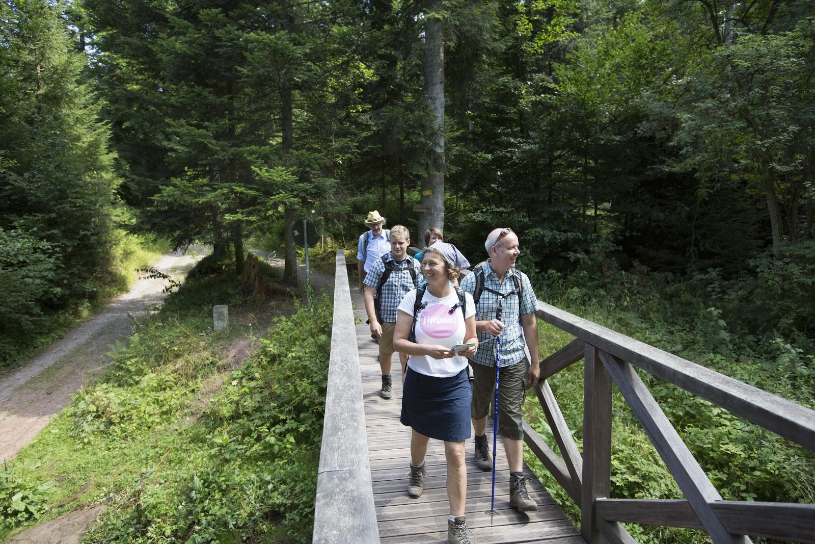 Geführte Wanderungen im Schwarzwald