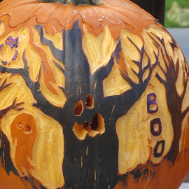 Halloween Fun by Marcia Taylor - Public Holidays Halloween