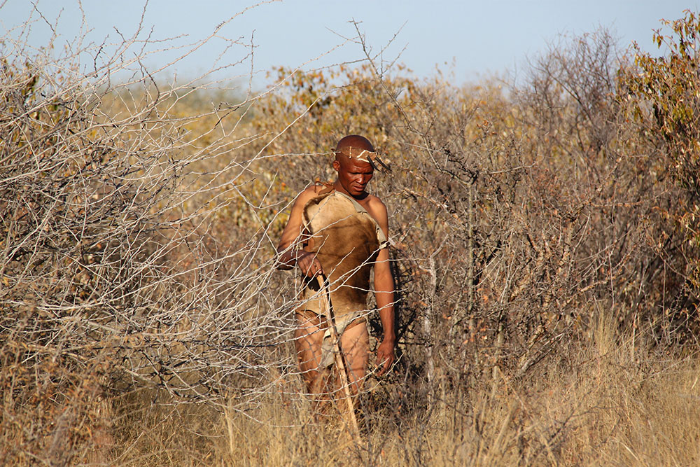 san bushmen clothing