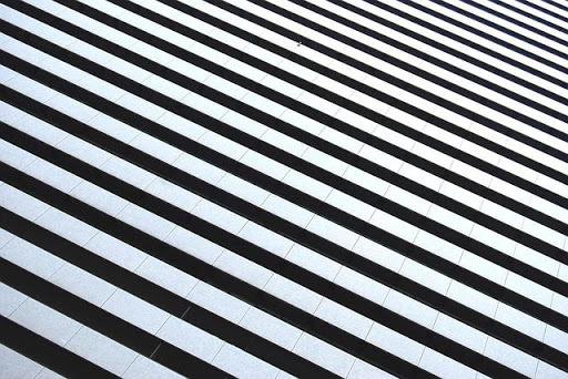 Zebra Find 1.0 screenshots 2