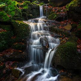 by Radek Winter - Nature Up Close Water