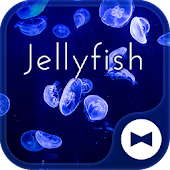 Beautiful Wallpaper Jellyfish Theme