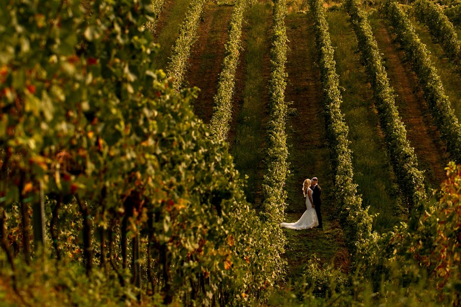 Wedding photographer Sabina Mladin (sabina). Photo of 22.09.2015