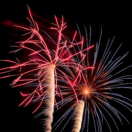 by Terry Barker - Public Holidays July 4th (  )