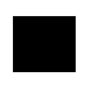 Logo for Skyloft Albany