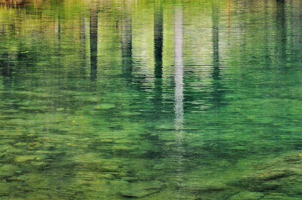 Un lago...i suoi colori di ely50