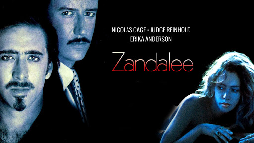 zandalee 1991 full movie watch online free