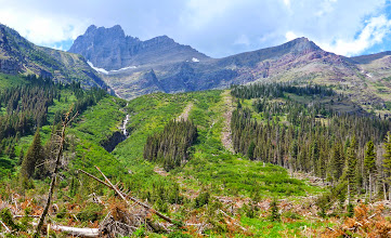 Photo: Evidence of recent avalanche on afternoon hike up to Helen Lake