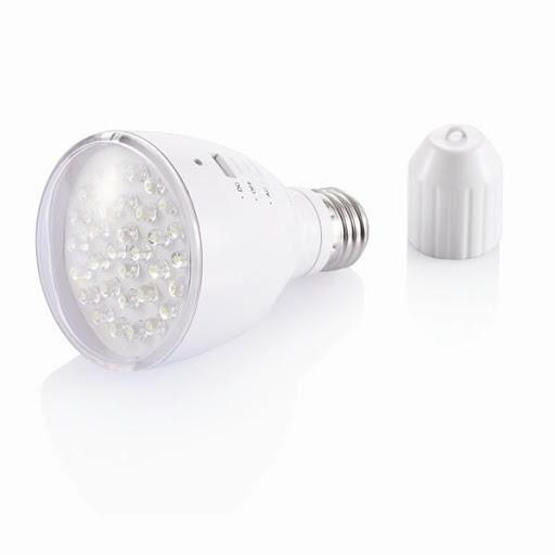 Branded Light Bulb & LED Torch