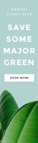 Save Some Greeen - Wide Skyscraper Ad item