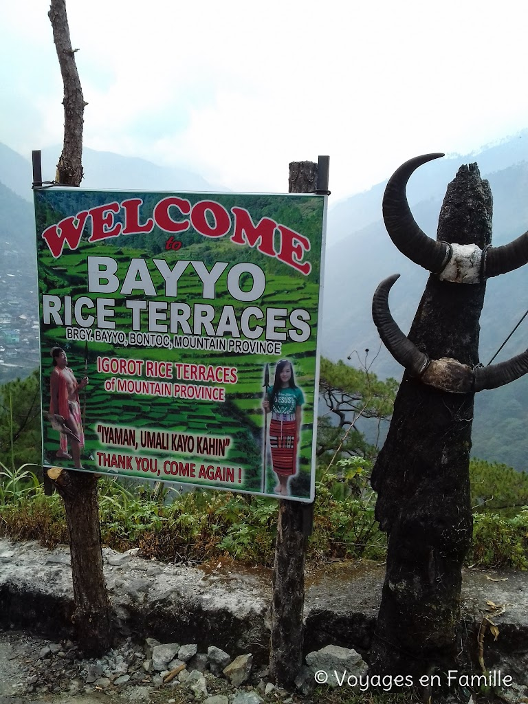 Bayyo rice terraces