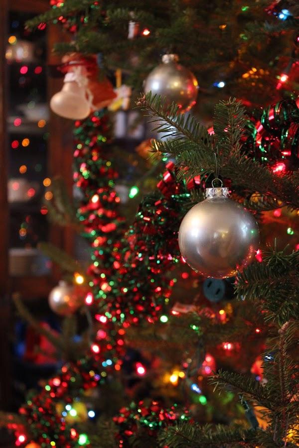 by Sandi Heinz - Public Holidays Christmas (  )