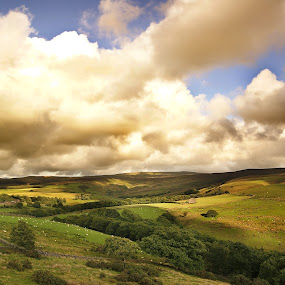 Lancashire by Mihai Cristian - Landscapes Prairies, Meadows & Fields ( countryside, clouds, sky, nature, sheep, lamb,  )