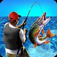 Real Fishing Summer Simulator