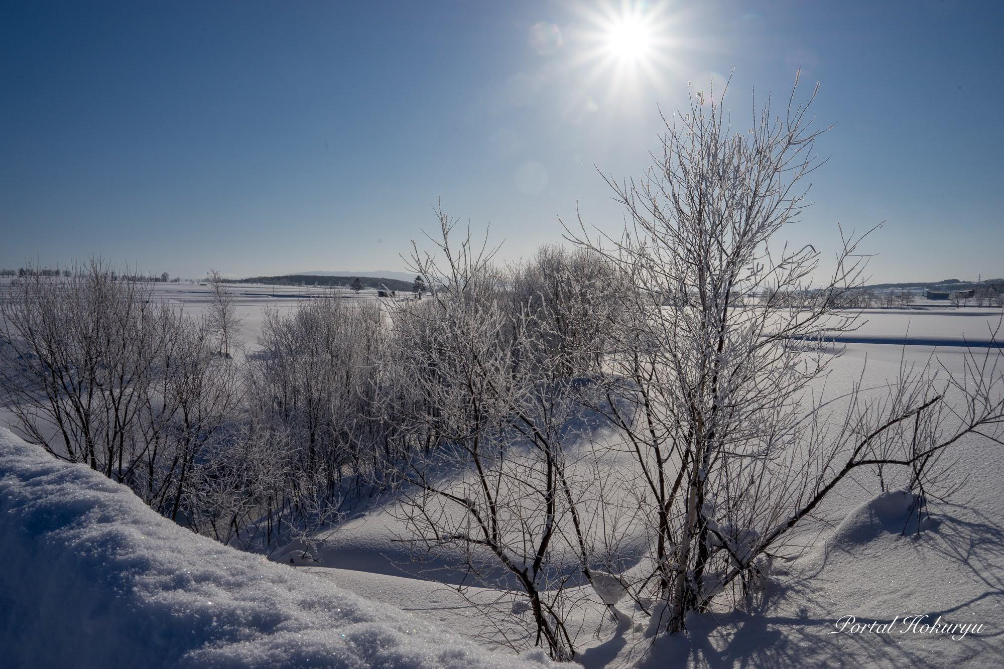 川辺の雪景色
