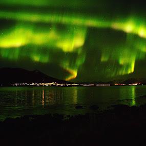 Aurora storm by Sigbjørn Berg - Landscapes Starscapes ( stokmarknes, winter, aurora storm, northern lights, aurora borealis, vesterålen, nordland, northern norway )