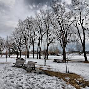 Lachine, Quebec by Costas Tsirgiotis - City,  Street & Park  City Parks
