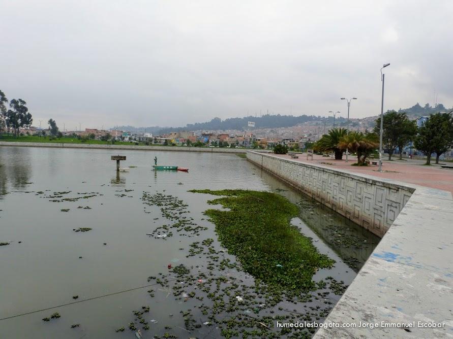 PLazoleta Neuque, Humedal Tibabuyes