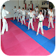 Karate techniques for PC-Windows 7,8,10 and Mac