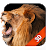 Lion Live Wallpaper Free file APK for Gaming PC/PS3/PS4 Smart TV