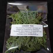 Cedar Tea Sample