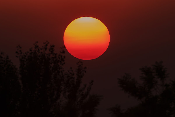 sole....da sempre solo di maury168