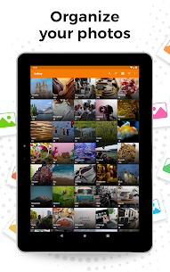 Simple Gallery Pro Mod APK Download (No Ads + Unlock) for Android 5
