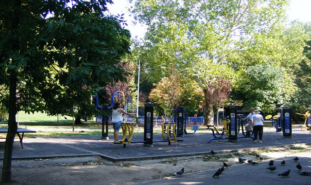 What to do in Circus Park Bucharest