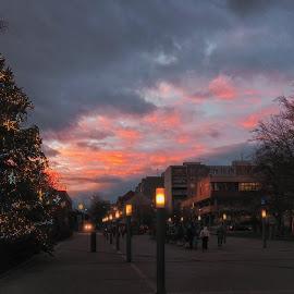 Hellish Christmas by Michal Fokt - Public Holidays Christmas ( sunset, christmas, christmas tree )