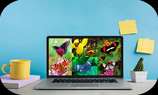 Butterfly Puzzle Jigsaw (Rompecabezas de mariposa) android2mod screenshots 13