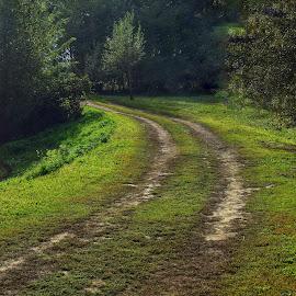 by Natalie Zvonar - Landscapes Prairies, Meadows & Fields ( lonely roads )