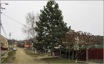 Photo: Turda - Str. Dorobanti - 2018.02.21