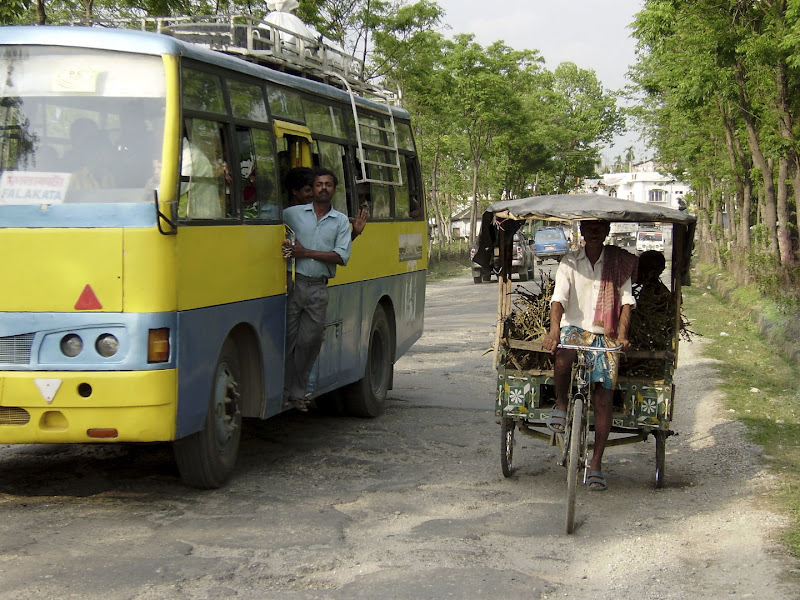 Bus vs ciclotaxi di leorol