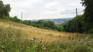 Photo: Von einem hochgelegenem Talhang (des Grüntals) im Bereich Wolfskuhle/Plattenberg fällt der Blick auf die ehemalige Hagener Heide (weißer Schornstein der Müllverbrennungsanlage/Ischeland/Remberg/Emst).