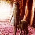 fairies wallpaper icon