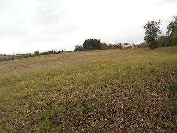 terrain à Andiran (47)