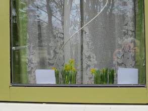 Photo: De bloemetjes werden meteen in de vensterbank gezet + de kaarten