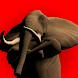 進撃のゾウさん - Androidアプリ