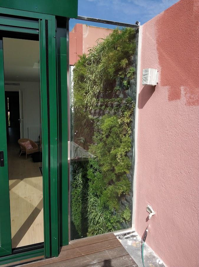 Jardín vertical en interior de hogar